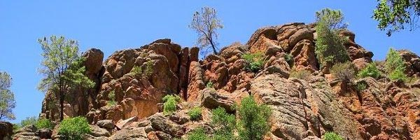 Pinnacles: Bald National Park?