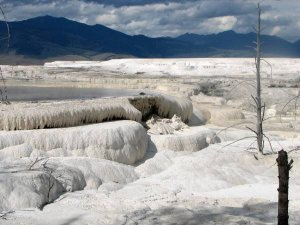 Mammoth Hot Springs. Foto: Stefan Schwach